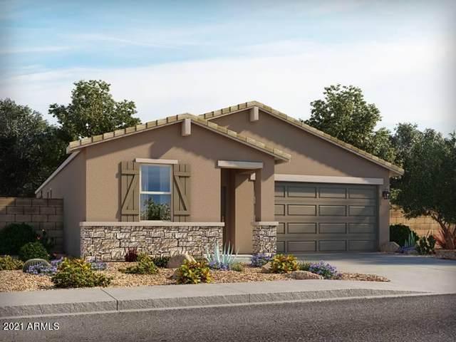 4488 E Italian Trotter Road, San Tan Valley, AZ 85140 (MLS #6295080) :: Power Realty Group Model Home Center