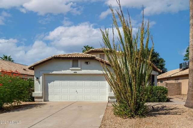 4256 E Rosemonte Drive, Phoenix, AZ 85050 (MLS #6295084) :: Howe Realty