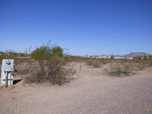 700 E Old West (Approx) Highway, Apache Junction, AZ 85119 (MLS #6295088) :: The Dobbins Team
