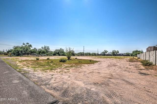 1918 N Saguaro Drive, Apache Junction, AZ 85120 (MLS #6295091) :: Elite Home Advisors