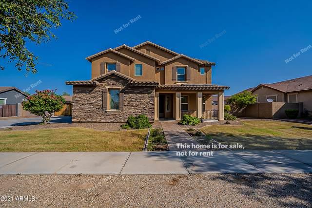 21938 E Escalante Road, Queen Creek, AZ 85142 (MLS #6295098) :: My Home Group