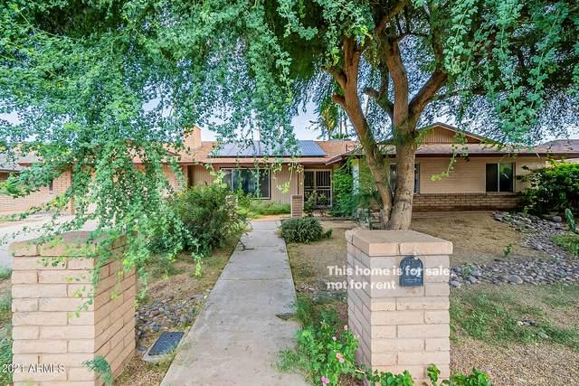 4426 W Orchid Lane, Glendale, AZ 85302 (MLS #6295114) :: Elite Home Advisors