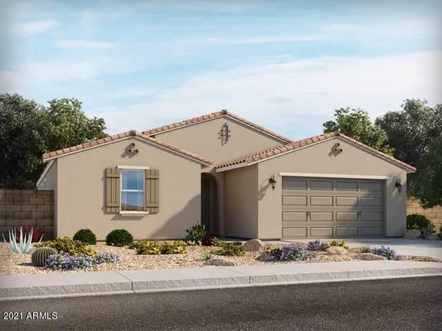 276 S San Christo Lane, Casa Grande, AZ 85194 (MLS #6295125) :: Yost Realty Group at RE/MAX Casa Grande