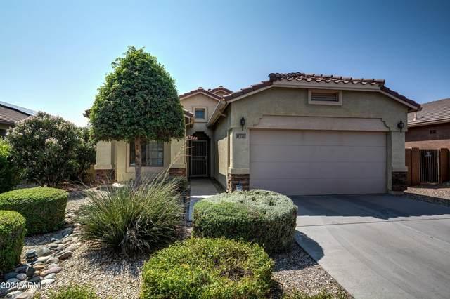 17727 W Marshall Lane, Surprise, AZ 85388 (MLS #6295135) :: Maison DeBlanc Real Estate