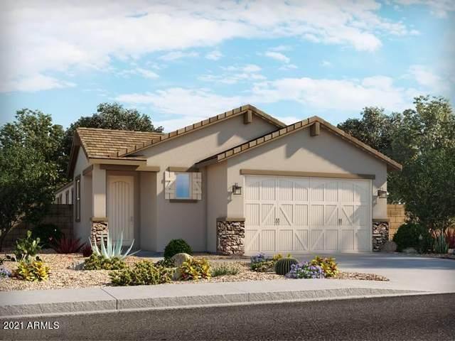 2666 E Tolosa Drive, Casa Grande, AZ 85194 (MLS #6295139) :: Elite Home Advisors