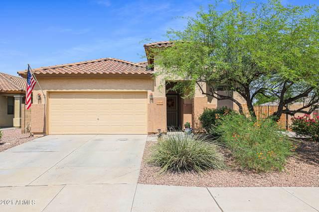 24830 W Dove Trail, Buckeye, AZ 85326 (MLS #6295170) :: Arizona Home Group