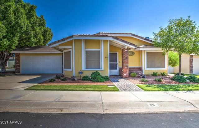 1616 N Alta Mesa Drive #56, Mesa, AZ 85205 (MLS #6295193) :: The C4 Group