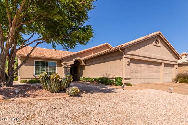 10324 E Nacoma Drive, Sun Lakes, AZ 85248 (MLS #6295196) :: Synergy Real Estate Partners