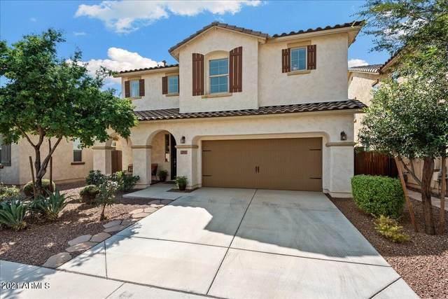 5521 W Buckskin Trail, Phoenix, AZ 85083 (MLS #6295231) :: Maison DeBlanc Real Estate