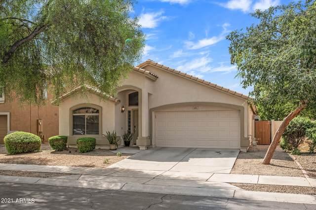 16611 W Taylor Street W, Goodyear, AZ 85338 (MLS #6295237) :: Power Realty Group Model Home Center