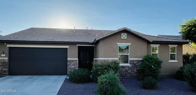 6710 S 76TH Drive, Laveen, AZ 85339 (MLS #6295262) :: Yost Realty Group at RE/MAX Casa Grande