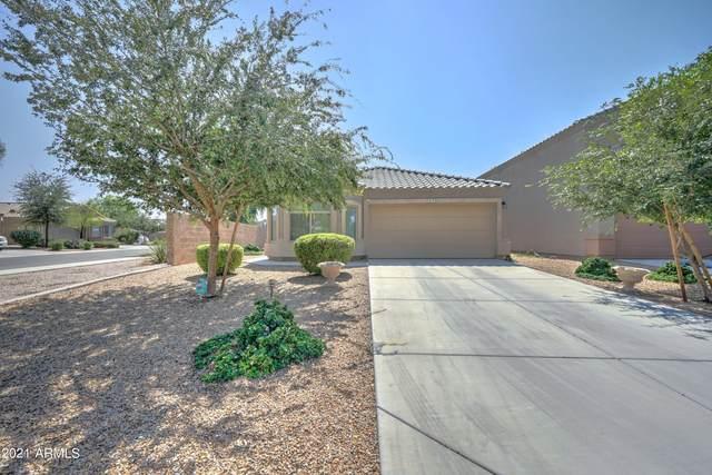 4679 E Tiger Eye Road, San Tan Valley, AZ 85143 (MLS #6295294) :: Elite Home Advisors