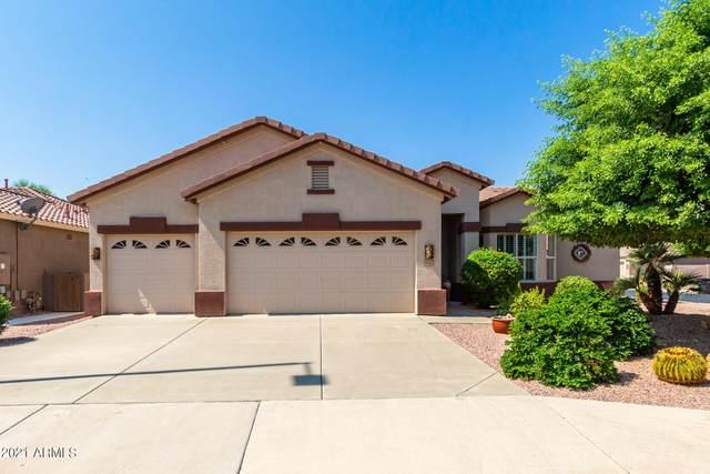 6102 S Huachuca Way, Chandler, AZ 85249 (MLS #6295319) :: Synergy Real Estate Partners