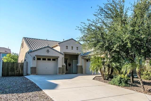 1263 W Busa Drive, San Tan Valley, AZ 85143 (MLS #6295325) :: Elite Home Advisors