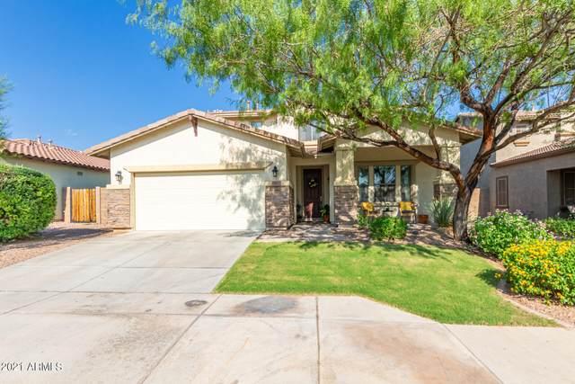 29675 N 127TH Lane, Peoria, AZ 85383 (MLS #6295339) :: Yost Realty Group at RE/MAX Casa Grande