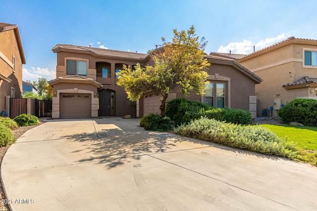 44385 W Yucca Lane, Maricopa, AZ 85138 (MLS #6295342) :: Yost Realty Group at RE/MAX Casa Grande