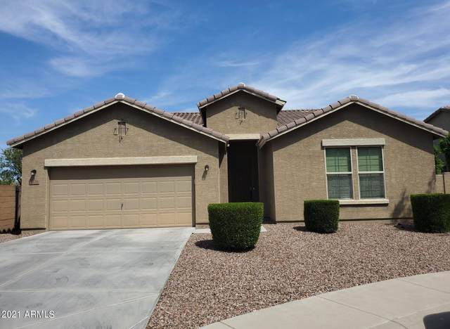 2226 W Ian Drive, Phoenix, AZ 85041 (MLS #6295345) :: Yost Realty Group at RE/MAX Casa Grande