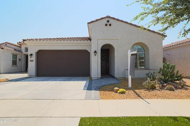2823 E Wayland Drive, Phoenix, AZ 85040 (MLS #6295354) :: Power Realty Group Model Home Center