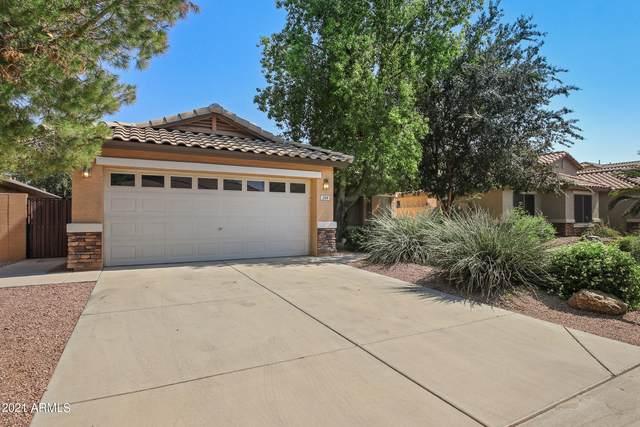 209 E Clairidge Drive, San Tan Valley, AZ 85143 (MLS #6295361) :: My Home Group