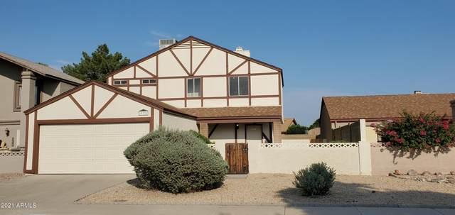 10111 N 65TH Lane, Glendale, AZ 85302 (MLS #6295372) :: The Garcia Group