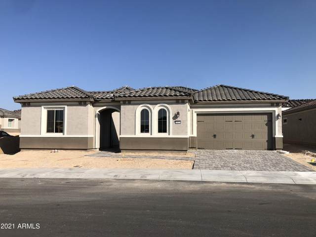19039 N 264TH Avenue, Buckeye, AZ 85396 (MLS #6295387) :: Synergy Real Estate Partners