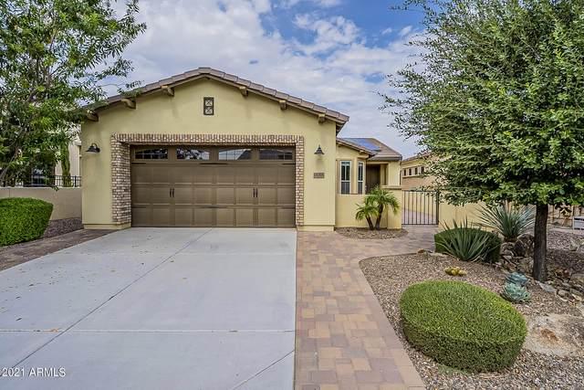 1656 E Hesperus Way, Queen Creek, AZ 85140 (MLS #6295394) :: My Home Group