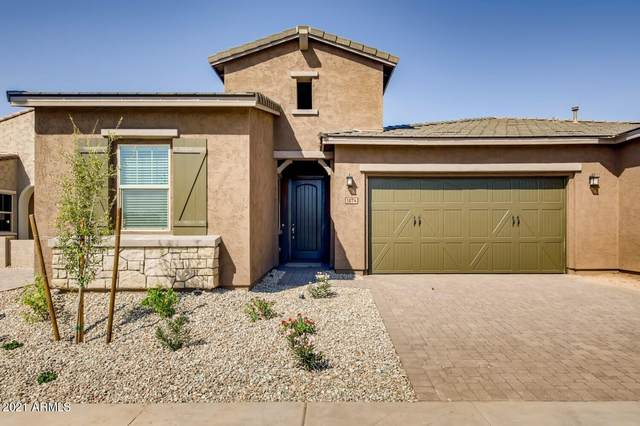 1874 N 141ST Avenue, Goodyear, AZ 85395 (MLS #6295395) :: Klaus Team Real Estate Solutions
