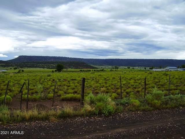 TBD E Highway 60 Highway, Springerville, AZ 85938 (MLS #6295413) :: Dave Fernandez Team | HomeSmart