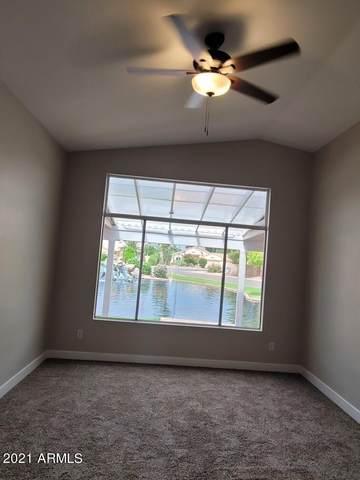 1382 E Butler Circle, Chandler, AZ 85225 (MLS #6295414) :: Arizona Home Group