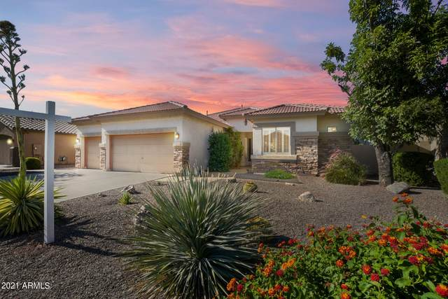 3846 E Meadowview Drive, Gilbert, AZ 85298 (MLS #6295438) :: The Everest Team at eXp Realty