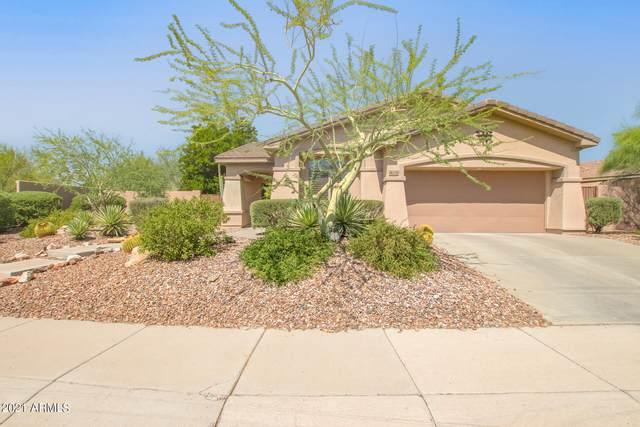 41220 N Belfair Way, Anthem, AZ 85086 (MLS #6295447) :: Selling AZ Homes Team