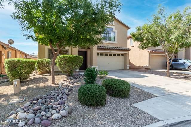 1675 E Keith Avenue, San Tan Valley, AZ 85140 (MLS #6295473) :: Power Realty Group Model Home Center