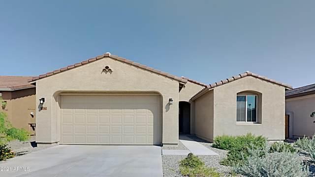 11562 W Levi Drive, Avondale, AZ 85323 (MLS #6295481) :: Elite Home Advisors