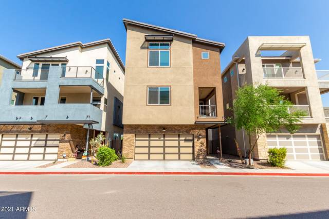1309 N Alison Way, Chandler, AZ 85226 (MLS #6295484) :: The Everest Team at eXp Realty