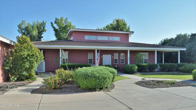 2797 E Cattle Drive, Gilbert, AZ 85297 (MLS #6295486) :: Yost Realty Group at RE/MAX Casa Grande