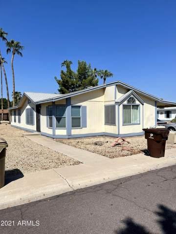 11275 N 99TH Avenue #202, Peoria, AZ 85345 (MLS #6295496) :: Arizona Home Group