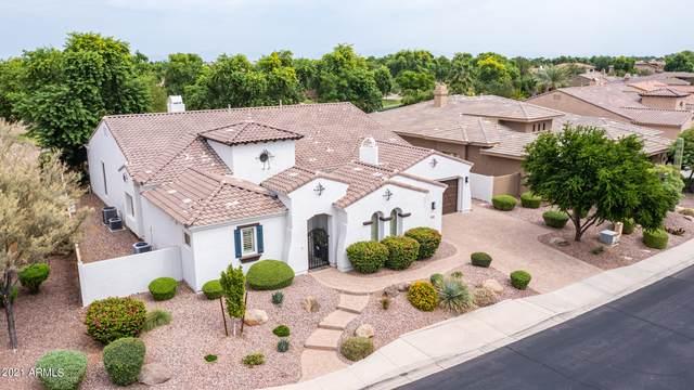 3694 E San Pedro Place, Chandler, AZ 85249 (MLS #6295498) :: Yost Realty Group at RE/MAX Casa Grande