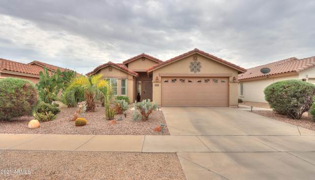 2397 E Antigua Drive, Casa Grande, AZ 85194 (MLS #6295501) :: Arizona Home Group