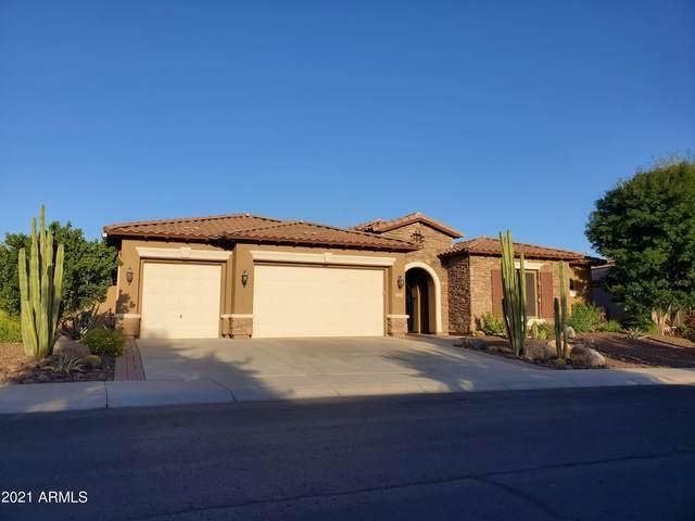 30565 N 126TH Drive, Peoria, AZ 85383 (MLS #6295506) :: Yost Realty Group at RE/MAX Casa Grande
