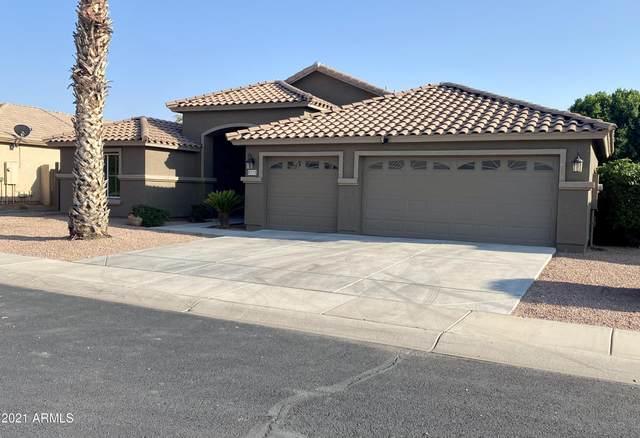 8115 W Nicolet Avenue, Glendale, AZ 85303 (MLS #6295519) :: Morton Team | A.Z. & Associates