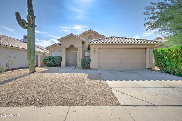 12032 S 45TH Street, Phoenix, AZ 85044 (MLS #6295528) :: Executive Realty Advisors