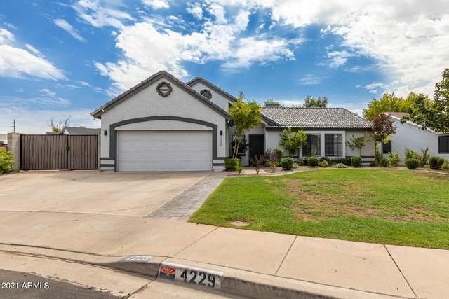 4229 E Holmes Circle, Mesa, AZ 85206 (MLS #6295562) :: Dijkstra & Co.