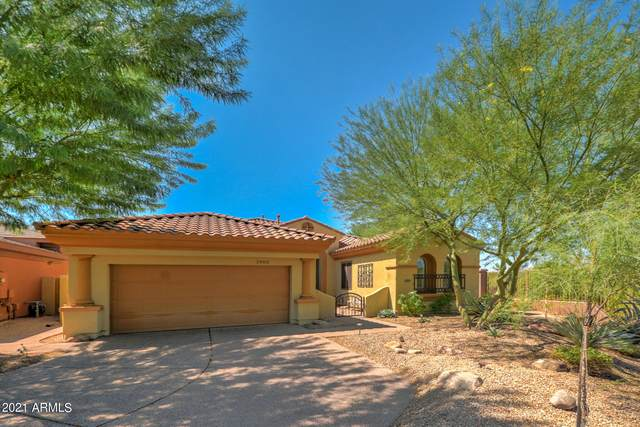 3903 E Williams Drive, Phoenix, AZ 85050 (MLS #6295570) :: NextView Home Professionals, Brokered by eXp Realty
