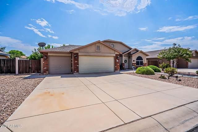 4407 E Shetland Drive, San Tan Valley, AZ 85140 (MLS #6295579) :: Power Realty Group Model Home Center