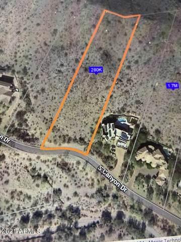 13829 S Canyon Drive, Phoenix, AZ 85048 (MLS #6295584) :: Power Realty Group Model Home Center