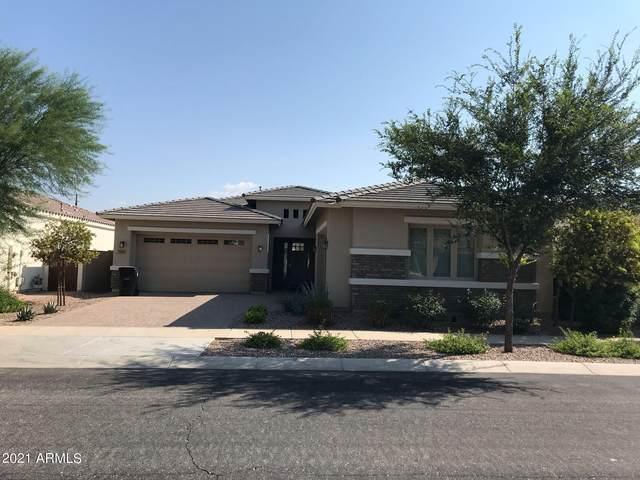 10613 E Hawk Avenue, Mesa, AZ 85212 (MLS #6295587) :: Arizona Home Group
