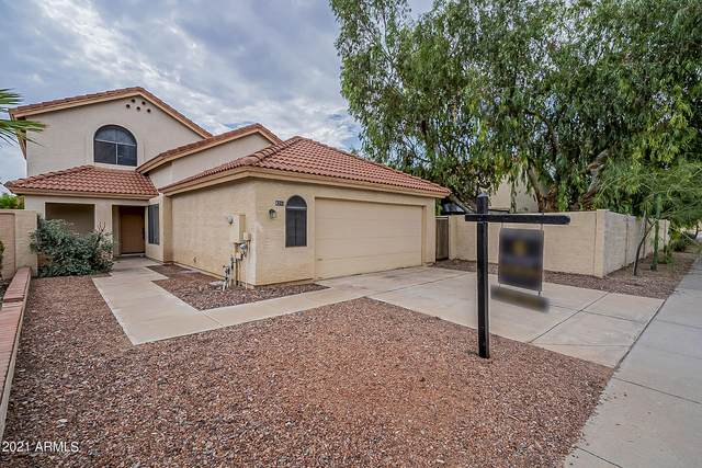 4211 E Mountain Sage Drive, Phoenix, AZ 85044 (MLS #6295594) :: Arizona Home Group