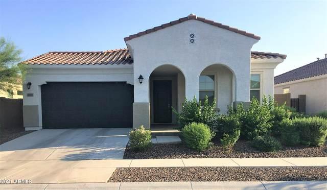 2821 W Minton Street, Phoenix, AZ 85041 (MLS #6295595) :: The Bole Group | eXp Realty