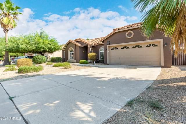 3407 E Le Marche Avenue, Phoenix, AZ 85032 (MLS #6295604) :: The AZ Performance PLUS+ Team