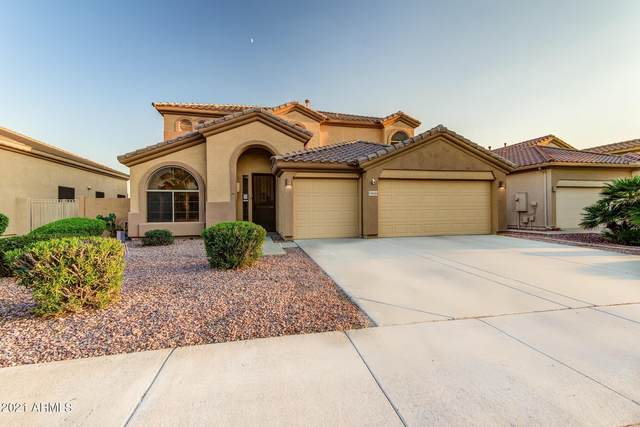 13649 W Holly Street, Goodyear, AZ 85395 (MLS #6295617) :: Elite Home Advisors